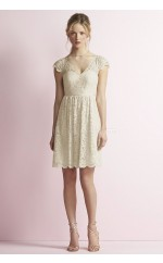 Elegant Lace V-neck Short Ivory A Line Bridesmadi Dress with Lace , Draping BDNZ1610