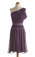 Stunning Grape A Line One Shoulder Chiffon Bridesmaid Dresses (BSD216)