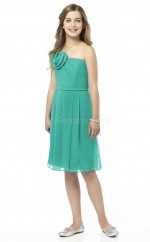 Sky Blue Knee-length A-line Chiffon Junior Bridesmaid Dress (NZJBD06-014)