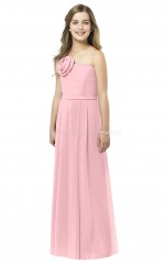 Pink Long A Line Chiffon Junior Bridesmaid Dress (NZJBD06-015)