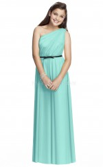 Sky Blue Long A Line Chiffon Junior Bridesmaid Dress (NZJBD06-026)