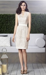 Gray Lace Sheath Scalloped Neckline Short Bridesmaid Dresses (NZBD06872)