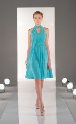 Green Chiffon A-line Halter Knee-length Bridesmaid Dress For Beach(NZBD06817)