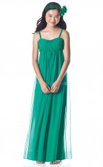 Green Long A Line Chiffon Junior Bridesmaid Dress (NZJBD06-001)