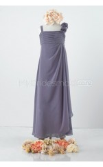Silver Long A Line Chiffon Junior Bridesmaid Dress (NZJBD06-005)