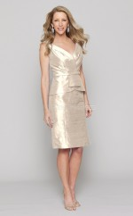 Champagne Sheath V-neck Taffeta Short Ball Dresses (NZJT06006)