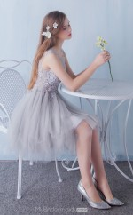 Classic Silver,Nude Short Scoop Princess Lace and Tulle Ball Gowns NZTB06053