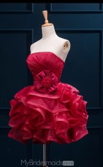 Chic Burgundy Strapless Short A Line Organza Ball Gowns NZTB06063