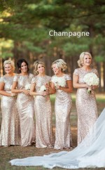 Sequins Long Champagne Short Sleeve Backless Bridesmaid Dress BD-NZ-1440